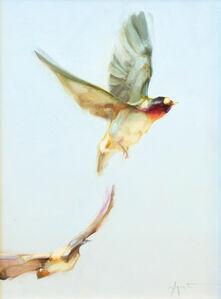 Swallow Duet