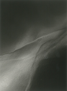 WI-5543, 2011