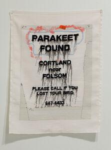 Parakeet Found Cortland near Folsom