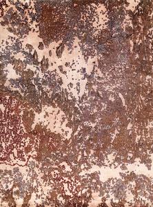 Seychelles Oak