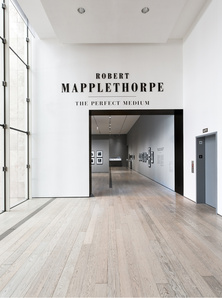 Robert Mapplethorpe: The Perfect Medium