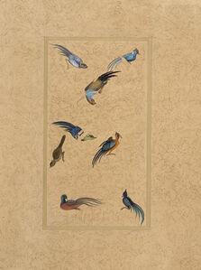 Enchanted Birds