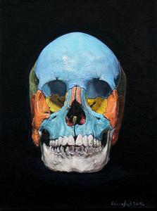 Heike Ollertz/Ulrich Lamsfuß, Skull_small (3B Scientific)