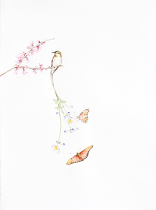 Bird Of Paradise 10