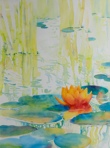 Water lily study #6