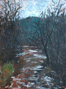 Deer Creek at Ivory Mills
