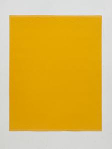 4 X 5 Perimeter of Little Fat Flesh - Yellow