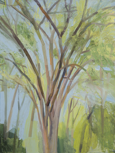 The Elm Tree (Summer)