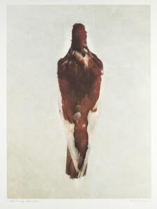 DP 15.2 Red Magpie Tumbler