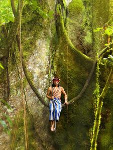 Arutam, Ecuadorian Amazon