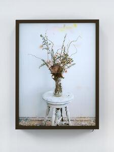 Dead Flowers In My Studio 2