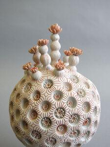 koralo de sfera lotuso