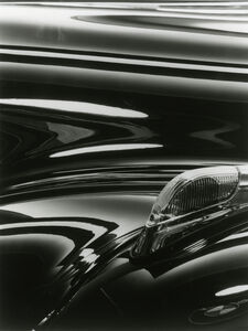 BMW Wing (Diptych - left)