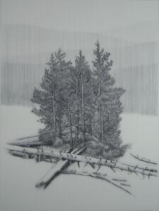 Landscape #0971