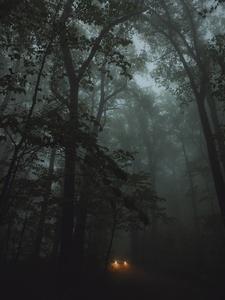 Mountain Road Clarke County Virginia