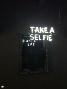 Take a selfie / Fake a life