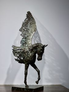 Frayed Pegasus