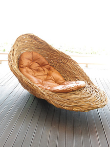Fallen Bird's Nest