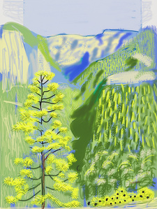 David Hockney, The Yosemite Suite