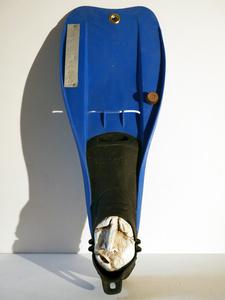 Palmakademician N°81
