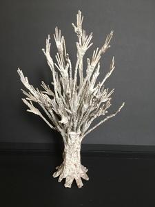 Tree of the origins