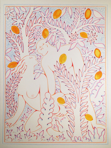 Wild Life - Orange Grove in the Morning