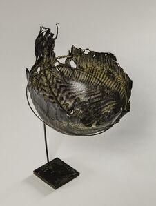 Scophthalmus Maximus [Turbot fish leather]