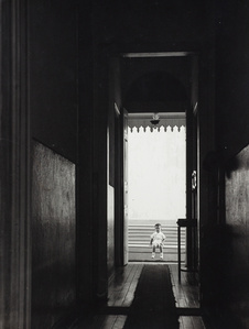 Boy on the bench, 1955