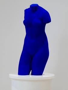Venus Bleue (S41)