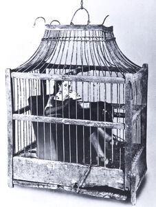 Sueño N° 45, Birdcage, 1948