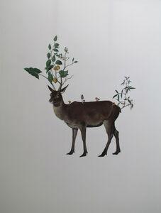 Marlboro Deer