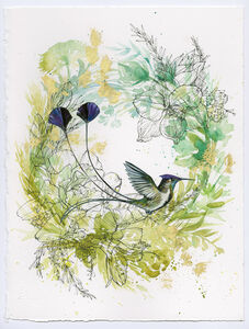 Spatuletail Hummingbird on Green Wreath