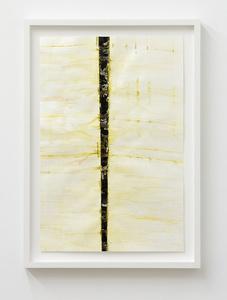 Untitled (C-1582)