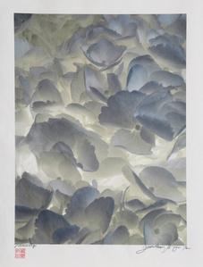 Backlit White Flowers