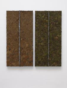Moss (diptych)