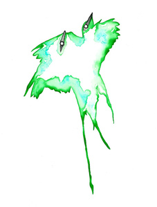 Oklahoma, Scissor Tailed Flycatcher