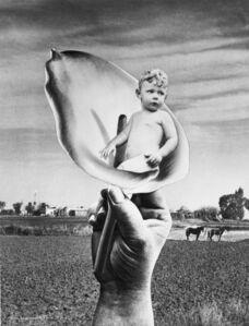 Idilio N° 10, Niño Flor, 1948. El ñiño de los sueños