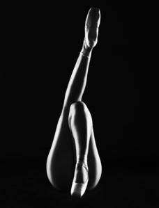 Le Ballerina - Orchidée