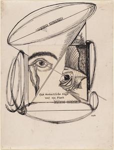 The Human Eye and a Fish, The Latter Petrified (Das menschliche Auge und ein Fisch, letzterer versteinert)