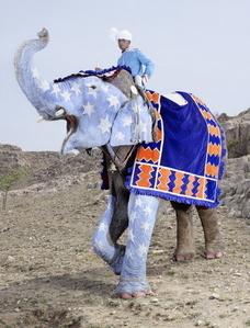 Painted Elephant 3