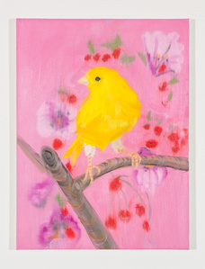 Yellow Canary (Stepping Out on Pink), 2018