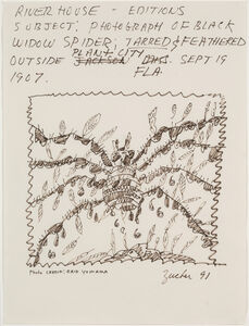 Subject: Photograph of Black Widow Spider: Tarred & Feathered Outside Plant City, FLA, Sept 19, 1907 (Riverhouse Editions Project)