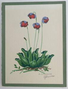 Floral study - Blue and red flowers