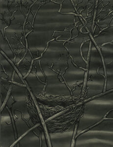 Red Wing Blackbird Nest