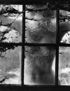 Woman Behind Cobwebbed Window