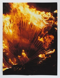 (Burning Palm Fronds)