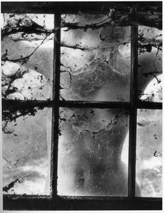 Woman Behind Cobwebbed Window, 1955