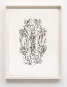 Untitled (Rorschach Flowers 1)