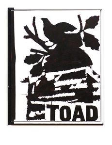 Study For Toad