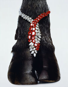 Harry Winston Necklace, New York